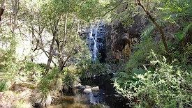 Clip 1 - Sheoak Falls