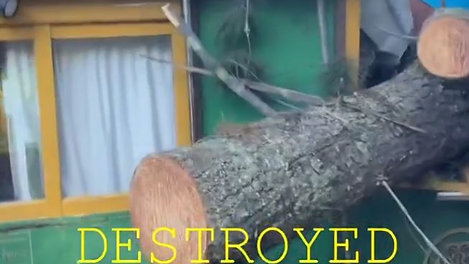Tree Storm Damage - The Bed and Breakfast
