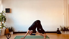 Hatha Yoga Funcional #37