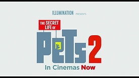 Sky Broadband | Secret Life of Pets 2