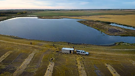Web Drone Pond