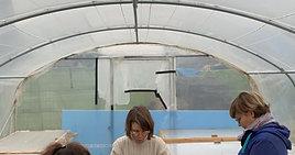 Activité semis à la ferme murs à fleurs