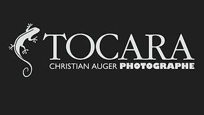 Tocara disponible chez Christian Auger Photographe