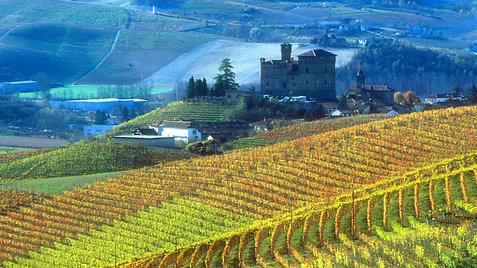 Vidunderlige Piemonte