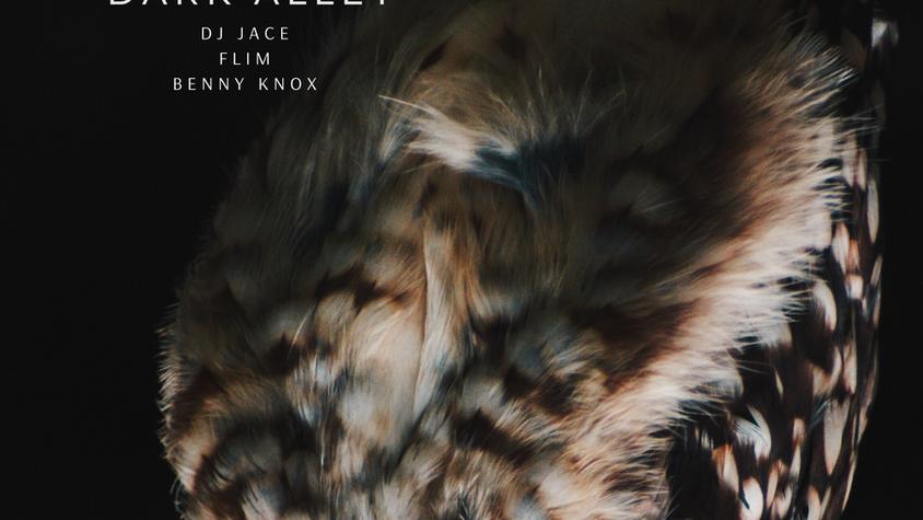 Dark Alley - DJ JACE, FLIM