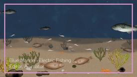 Blue Marine - Electric Fishing