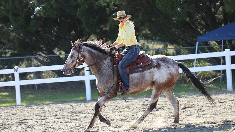 Kalley Krickeberg Balanced Horse Training