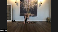 All Levels Yoga Flow with Amy 06192020