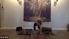 All Levels Yoga Flow + Restorative with Robin 09222020