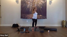 All Levels Flow + Restorative with Robin 06232020
