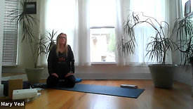 Deep Stretch- Yin at Home with Mary