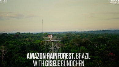 Gisele Bündchen: Deforestation in Brazil