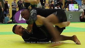 Martial Arts Reel (MMA + BRAZILIAN JIU JITSU)