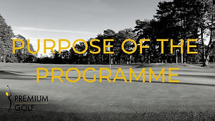 Purpose of the programme
