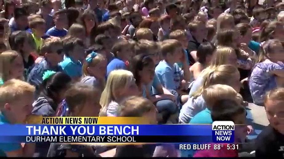 Ponderosa & Durham Elementary Tiger Benches