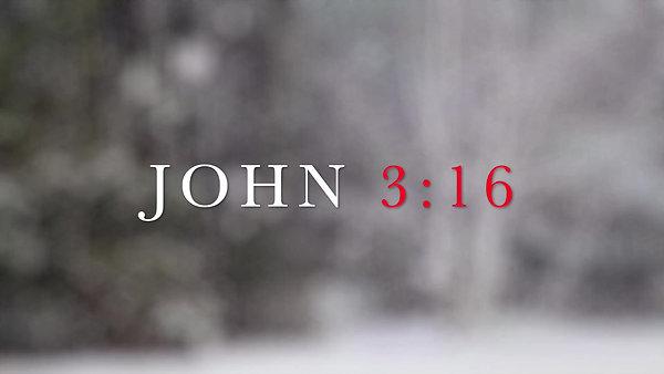 JOHN3:16