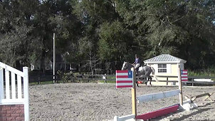 Cermit schooling at home 2019