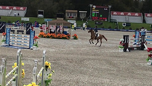 Diatol WP Z Winning 1.30m