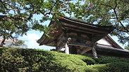 杜の風景便り7:陸前高田 普門寺