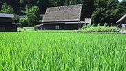 杜の風景便り2:五箇山集落