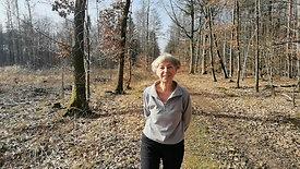 FWS spenden 1.000€ für die Aufforstung des Stadtwaldes