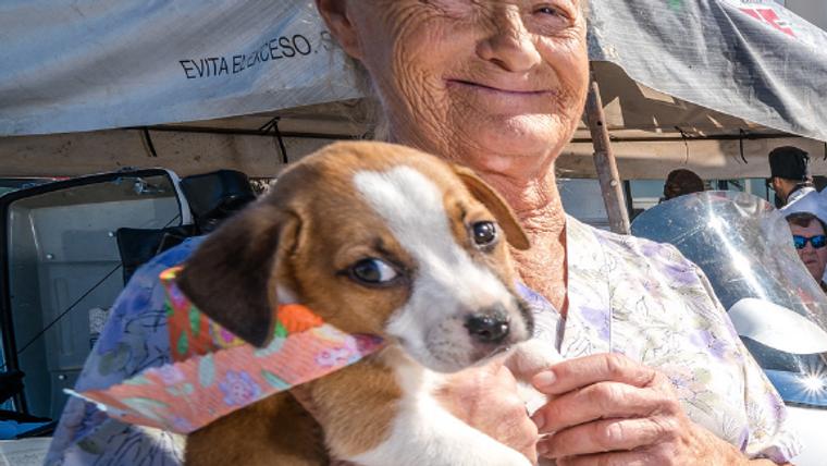 Barb's Dog Rescue, Puerto Penasco, Mexico