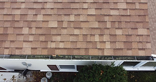 Gutter Inspection