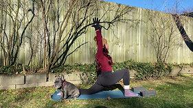 Yoga Pose Tutorial -  (Dec 3)