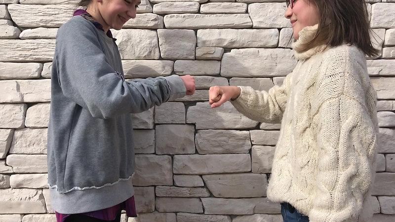 Curious Wanderer Society Secret Handshake