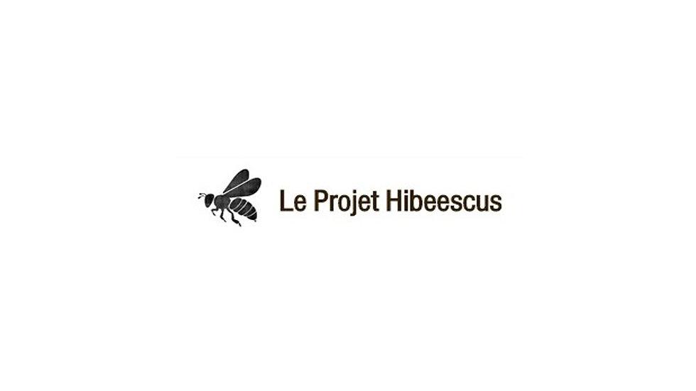 Le projet Hibeescus
