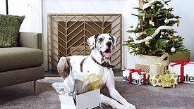 Crate & Barrel- Whose a Good Boy?