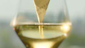 퍼플독_와인을읽는다_15s