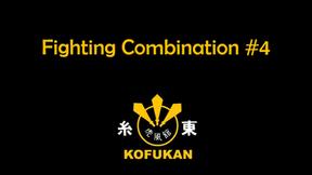 Fighting Combination #4
