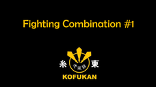 Fighting Combination #1