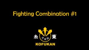 Fighting Combination #1