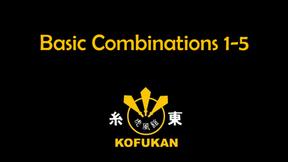 Basic Combinations (1-5)
