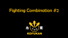 Fighting Combination #2