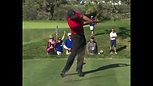 "Tiger Woods ""Swing of the Week"""