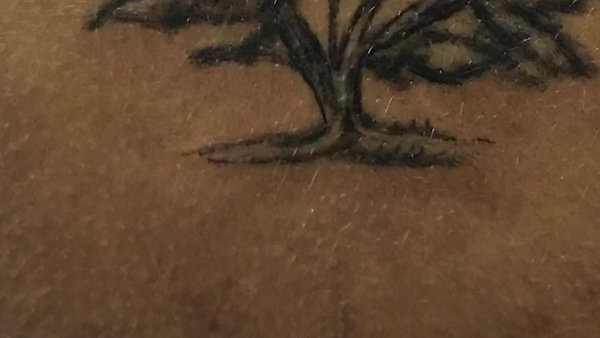 Tree of Life & Tag