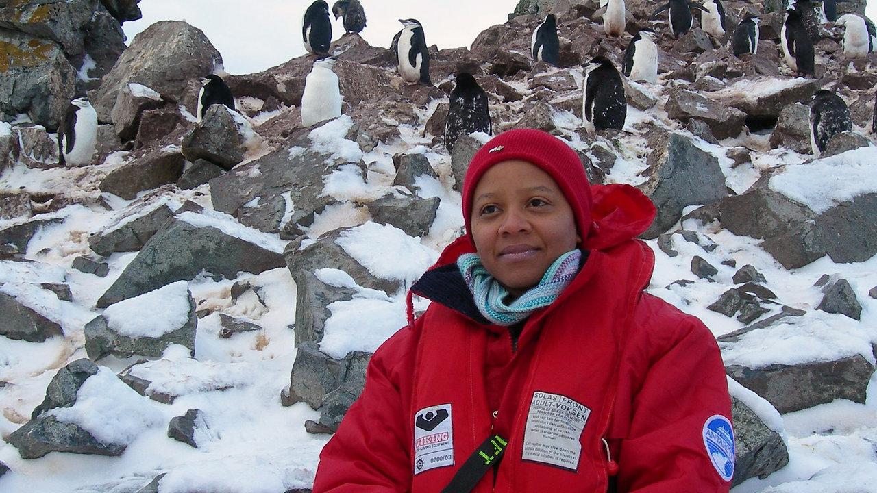 Aaah-Inspiring Antarctica