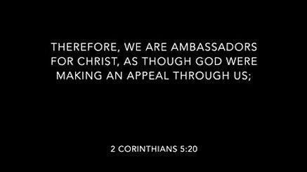 You are an Ambassador