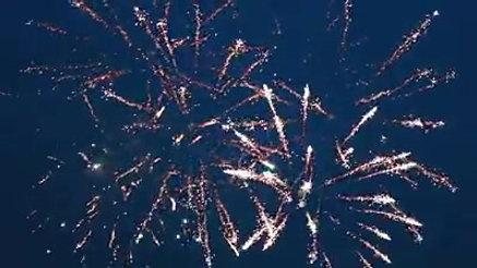 Freedom Celebration 2015