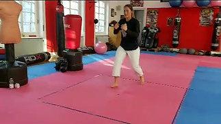 Learn Karate Technique 2