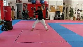 Learn Karate Technique 1