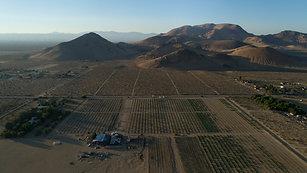 Plouton Mining Western Mojave