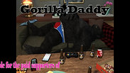Gorilla Daddy Intro