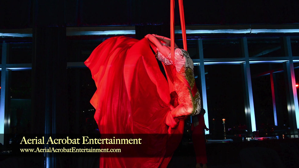 Aerial Acrobat Entertainment_ aerialists, acrobats, dancers, models and cirque artists V2
