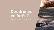 Des drones en forêt ?