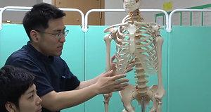 腕が頭まで上がるようになる(1、胸郭・横隔膜 2、肝臓 3、心臓)