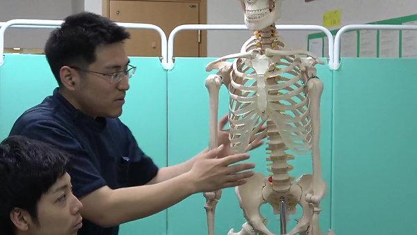 腕が頭まで上がるようになる!座ってできる筋・内臓治療